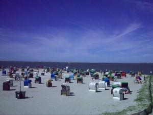 Nordsee / Ostfriesland strandnahes Ferienhaus 1-5 Personen ( Hund erlaubt)