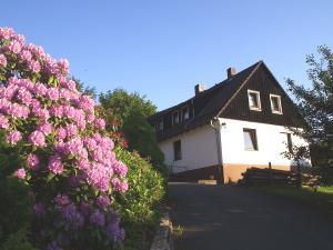 Harz: Ferienwohnung Wolf mit Kaminofen
