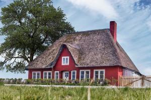 """Ferienhaus """"Uthlande"""", Urlaub mit Hund, - 6 P, Zaun, Nordsee"""