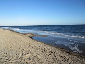 """Ferienhaus """"Ostseetraum""""Urlaub mit Hund an der Ostsee 1,60m hoch eingezäunt"""