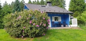 Ferienhaus im Vogelsberg - Das Waldversteck/ FinnLand