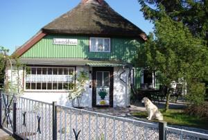 Hundefreundliches Ferienhaus im schönen Ostseebad Prerow