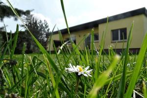 Urlaub im Rudel in Mecklenburg