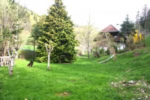 Ferienhaus Christine im Schwarzwald