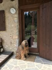 wunderbar ruhig und romantisch gelegenes Ferienhaus in Bezzecca am Ledrosee