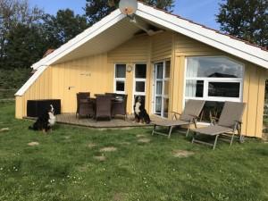 Dänisches Ferienhaus am Naturstrand mit Kamin & Sauna***Hunde willkommen***