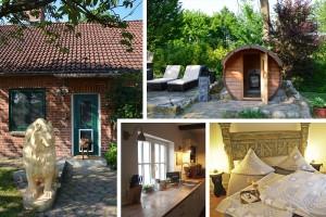 Traum-Ferienhaus für den Ostsee-Urlaub mit mehreren Hunden