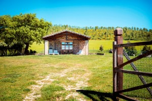 I1Bo01 ein echter Geheimtipp: Ferienhaus am Bolsenasee