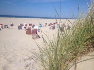 Ansicht Ferienwohnung 7464